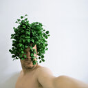 A man holding a green plant on his head against a white background - INGF08846