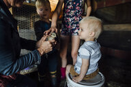 Midsection of grandmother showing baby chicken to grandchildren in barn - CAVF58488