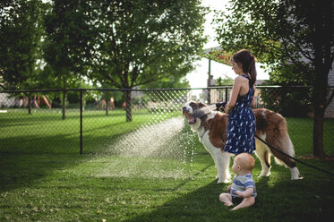 Sister spraying water on dog's mouth while standing by brother at backyard - CAVF58695