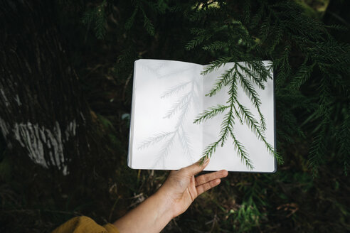 Cropped hand of woman holding book over plants at forest - CAVF58701