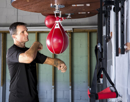 Boxing coach punching speed bag in gym - CAVF58845