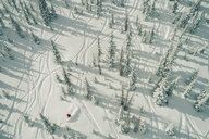 Aerial view of man skiing on snow covered field in forest - CAVF59091