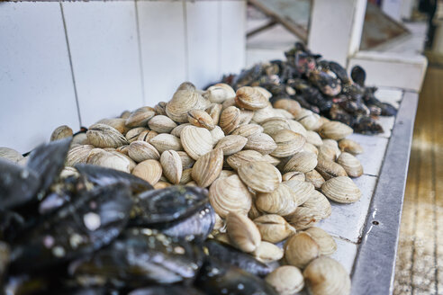 Chile, Puerto Montt, mussels on fish market - SSCF00185