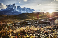 Chile, Torres del Paine National park, man standing in front of Torres del Paine massif at sunrise - SSCF00284