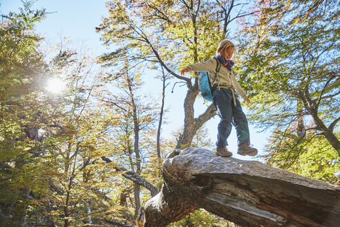 Argentina, Patagonia, El Chalten, boy balancing on a tree trunk in forest - SSCF00323