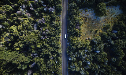 Argentina, Patagonia, Lago Futalaufquen, drone picture of camper on gravel road in forest - SSCF00329