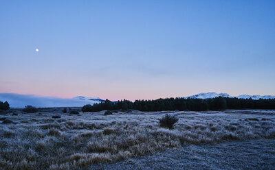 Argentina, Patagonia, Esquel, Laguna La Zeta, steppe landscape with hoarfrost at twilight - SSCF00332