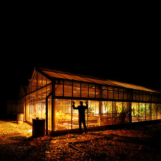Rear view of a man standing by an illuminated greenhouse at night - INGF09098