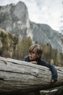 Boy carrying log in forest against mountains at Yosemite National Park - CAVF59620