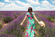 France, Provence, Valensole plateau, back view of woman wearing summer dress standing in lavender field - GEMF02664