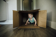 Baby boy playing in cardboard box at home - CAVF59912