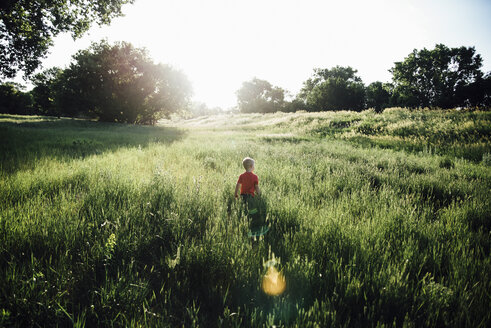 Rear view of boy walking on grassy field against clear sky - CAVF59915