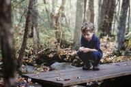 Boy playing with leaves while crouching on wooden plank during autumn at park - CAVF60013
