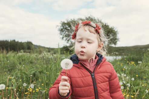 Girl blowing dandelion while standing on field - CAVF60301