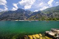 Montenegro, Bay of Kotor, Kotor - SIEF08187