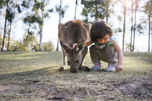 Australia, Brisbane, little girl crouching besides tame kangaroo - GEMF02677