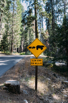 USA, California, Sequoia Natioal Park, Animal Crossing Sign, family of mum and baby bears - GEMF02692