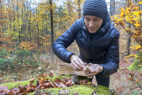 Germany, Bavaria, content man picking mushrooms at Gramschatzer Wald in autumn - NDF00841