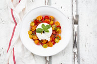 Plate of tomato salad with Burrata - LVF07599