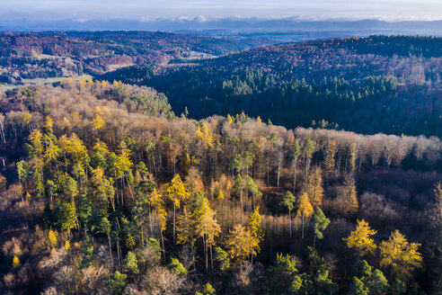 Germany, Baden-Wuerttemberg, Swabian forest, Nassach Valley, Aerial view of forest in autumn - STSF01813
