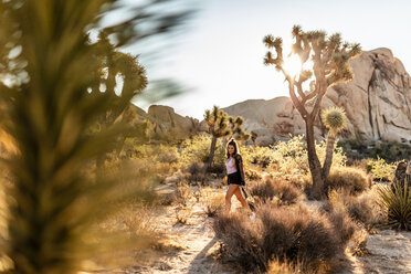 USA, California, Los Angeles, woman walking in Joshua Tree National Park in backlight - DAWF00853