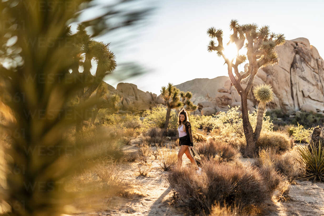 USA, California, Los Angeles, woman walking in Joshua Tree National Park in backlight - DAWF00853 - Daniel Waschnig Photography/Westend61