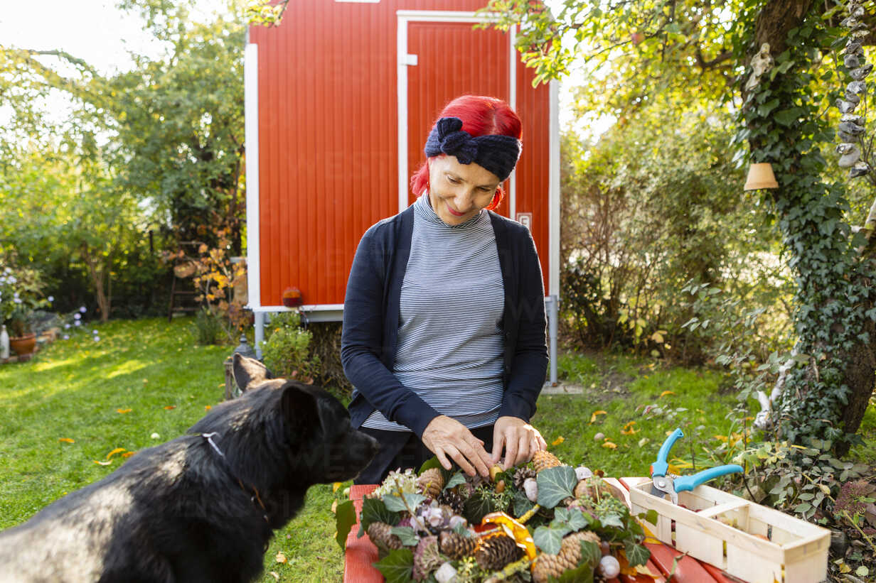 Smiling senior woman with red dyed hair with dog tinkering autumnal decoration in the garden - OJF00295 - Julia Otto/Westend61
