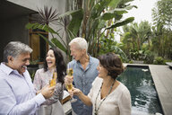 Mature friends toasting champagne flutes - HEROF00178