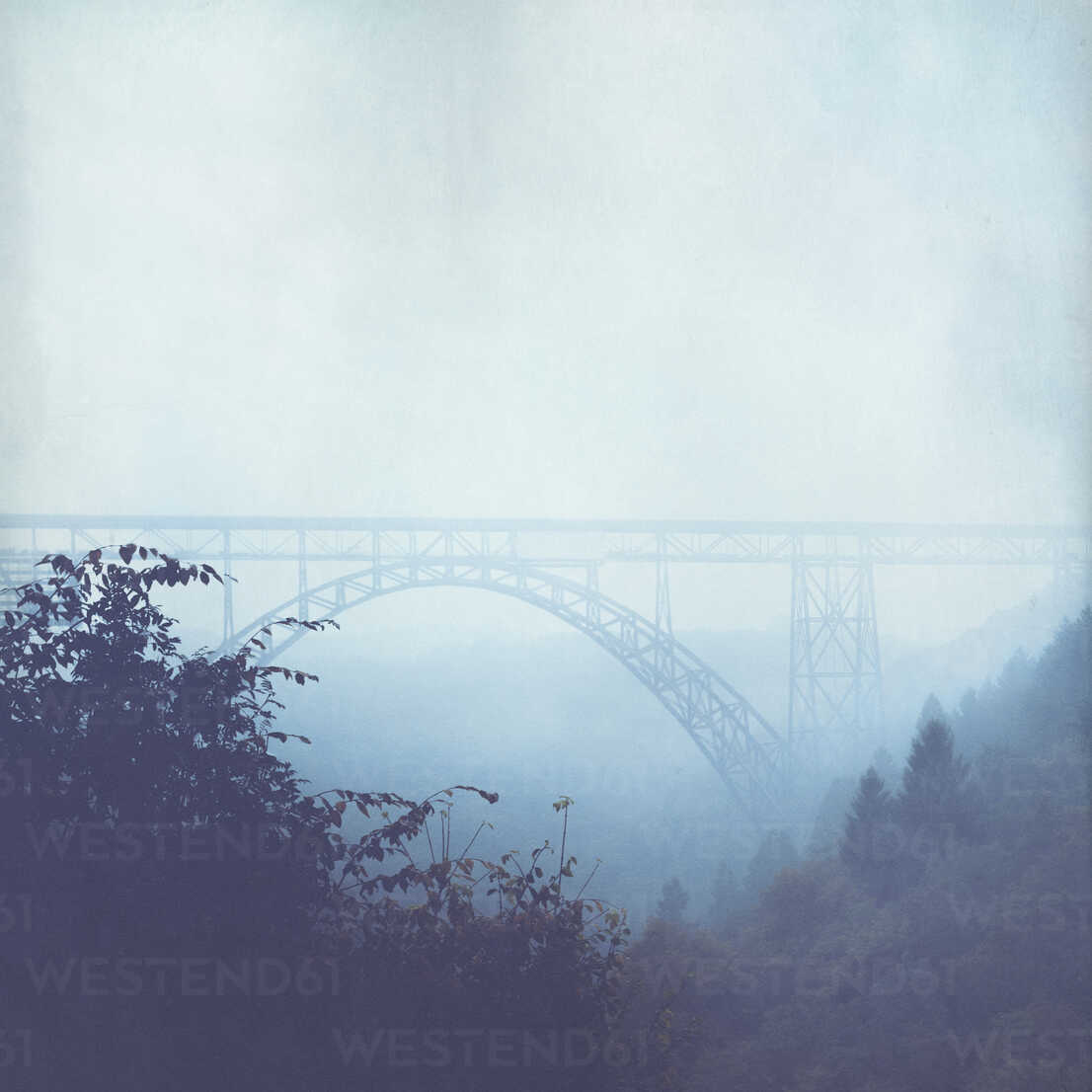 Bridge and fog in autumn - DWIF00959 - Dirk Wüstenhagen/Westend61