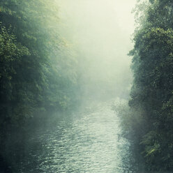 Wupper river and fog - DWIF00962