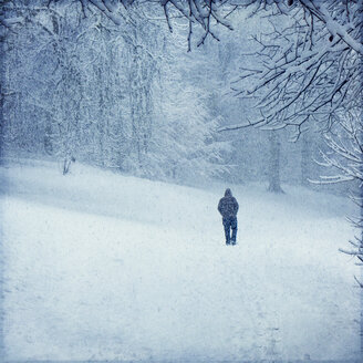 Forest in winter near Wuppertal, man during snow fall - DWIF00971