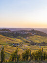 Germany, Baden-Wuerttemberg, Stuttgart Rotenberg, burial chapel and vineyards in autumn at sunset - WDF04961