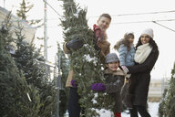 Family shopping for Christmas tree - HEROF00993