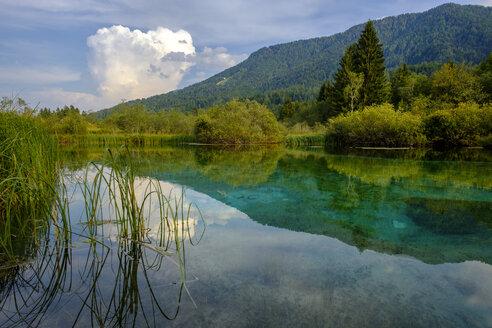 Slovenia, Gorenjska, near Ratece, Sava Dolinka, source, Lake Zelenci - LBF02306