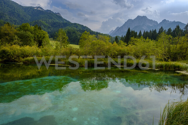 Slovenia, Gorenjska, near Ratece, Sava Dolinka, source, Lake Zelenci - LBF02309