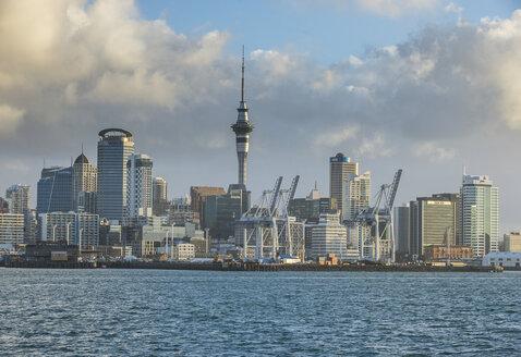 New Zealand, Auckland, - RUNF00460