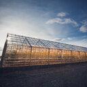 Illuminated greenhouse - INGF11306