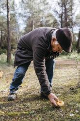 Senior man finding mushroom in the forest - JRFF02245