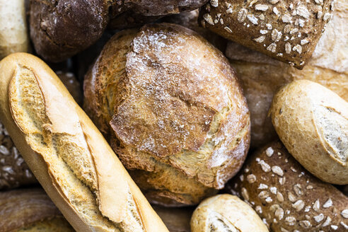 Various sorts of bread, close-up - GIOF05262