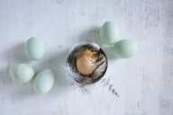 Still life with eggs and feathers - OJF00322
