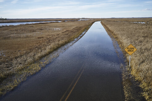 USA, Maryland, Cambridge, High tide flooding from rising sea levels at Blackwater National Wildlife Refuge - BCDF00373