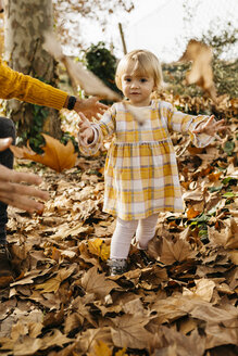 Father and daughter enjoying a morning day in the park in autumn, throwing autumn leaves - JRFF02256