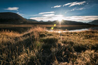 Scenic view of a field on a sunny day - INGF11451