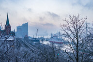 Elbe in winter - INGF11598