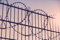 Barbed wire on a metal fence - INGF11649