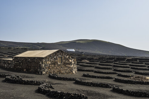 Spain, Canary Islands, Lanzarote, La Geria, view to wine-growing district - RUNF00594