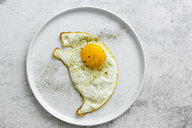 Fried egg with pepper on plate - GIOF05293