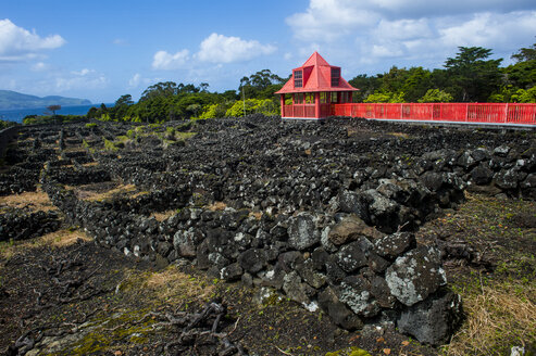 Portugal, Azores, Island of Pico, Wine museum, Red walkway in the vineyards - RUN00640
