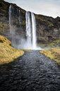 Iceland, Seljalandsfoss Waterfall - DAMF00030