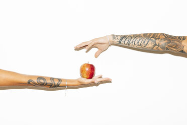 Female hand offering an apple to a masculine hand, on white background. Lecco, Italy. - MRAF00354